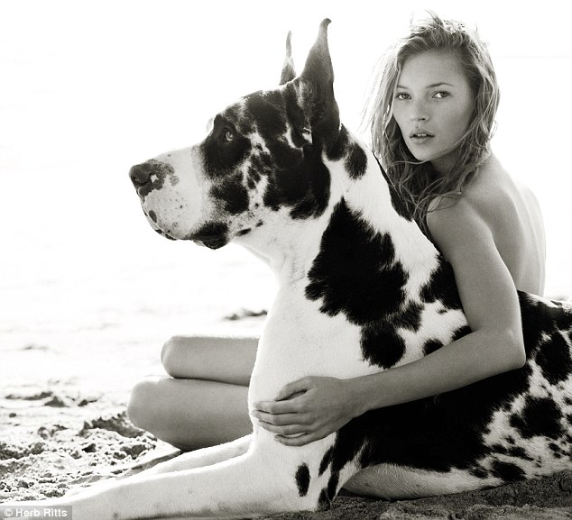Dogs in Vogue Kate Moss great dane