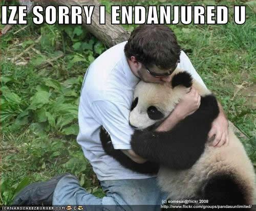 Perfec Pandas