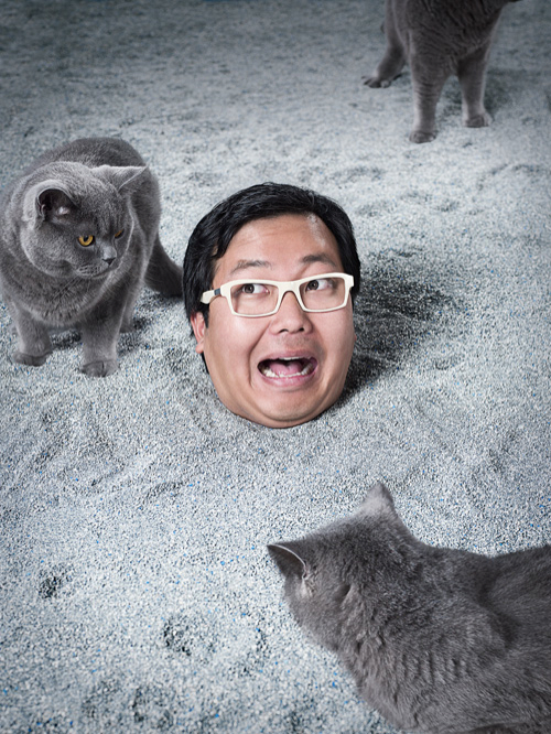 Ben Huh buried in cat litter for photographer John Keatley
